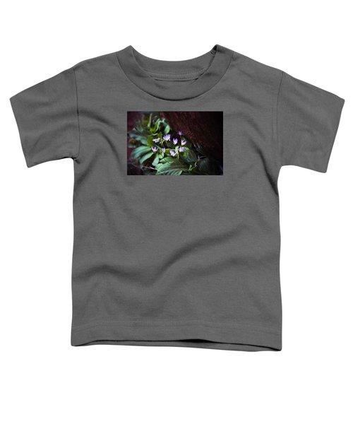 Shooting Stars Toddler T-Shirt