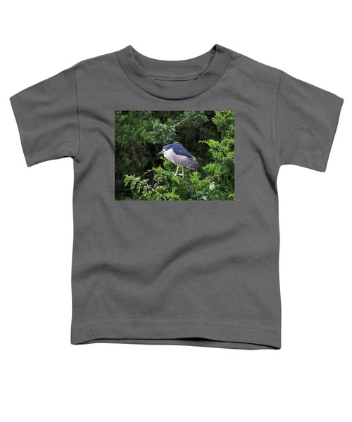 Shore Bird Roosting In A Tree Toddler T-Shirt