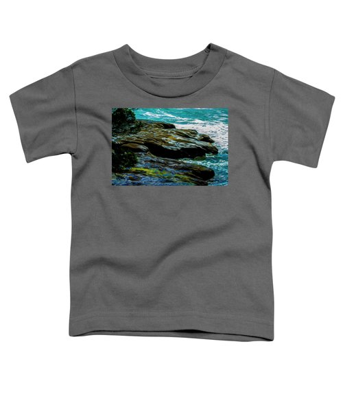 Shoreline  Toddler T-Shirt