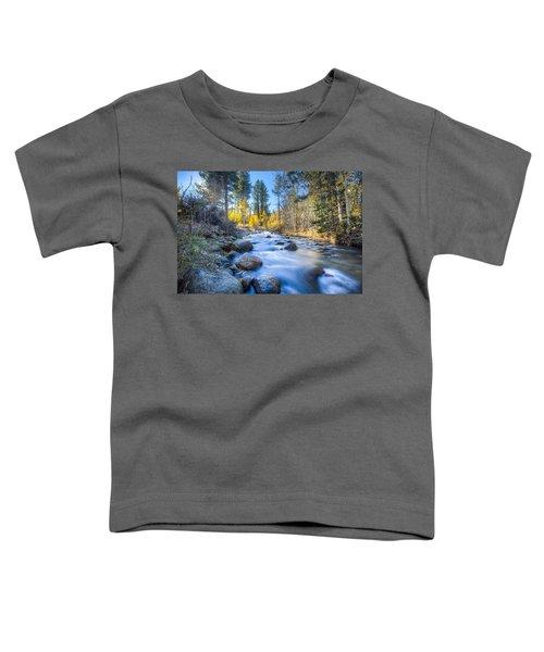 Sierra Mountain Stream Toddler T-Shirt