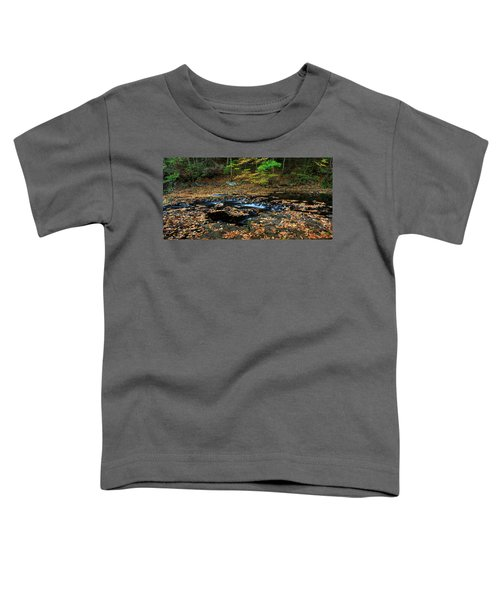 Silky New England Stream In Autum Toddler T-Shirt
