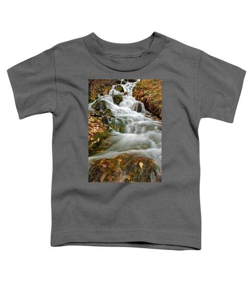 Silky Waterfall Toddler T-Shirt