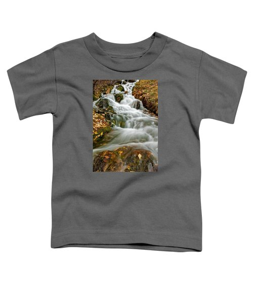 Silky Waterfall Toddler T-Shirt