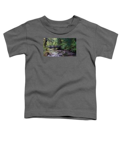 Silver Creek Falls #38 Toddler T-Shirt