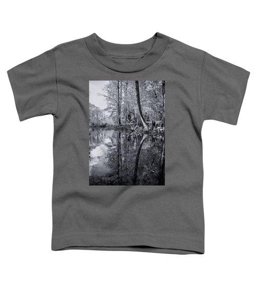 Silver River Toddler T-Shirt