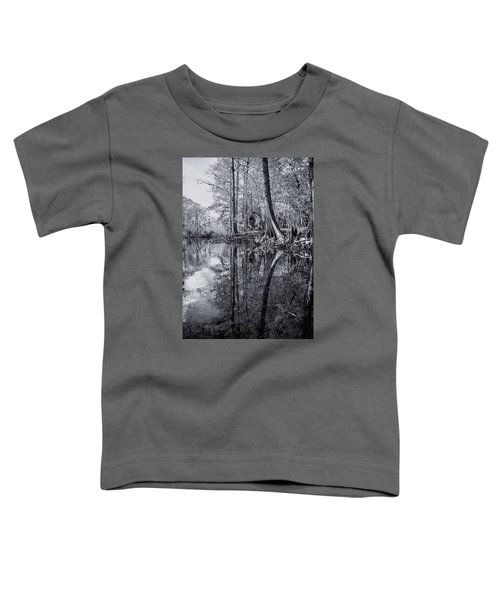 Silver River Toddler T-Shirt