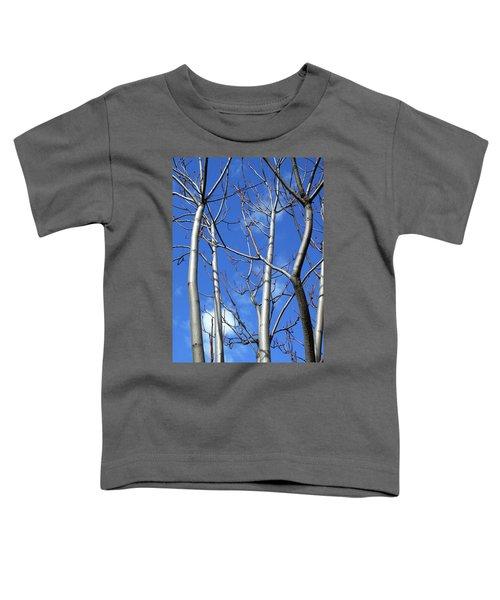 Silver Smooth Toddler T-Shirt