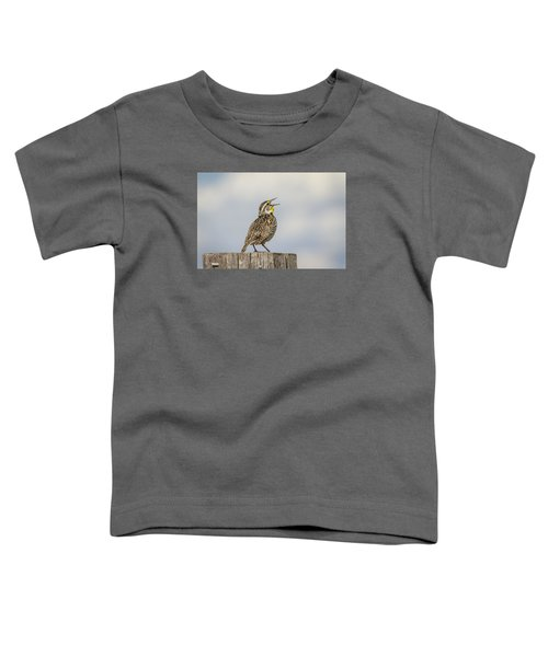 Singing A Song Toddler T-Shirt by Thomas Young