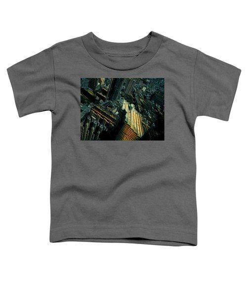 Skewed View Toddler T-Shirt