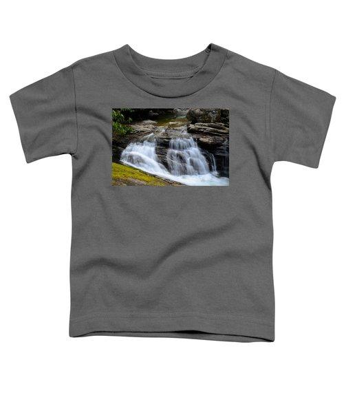 Skinny Dip Falls Toddler T-Shirt