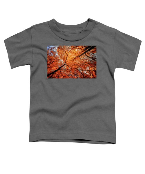 Sky Roots In Forest Red Toddler T-Shirt