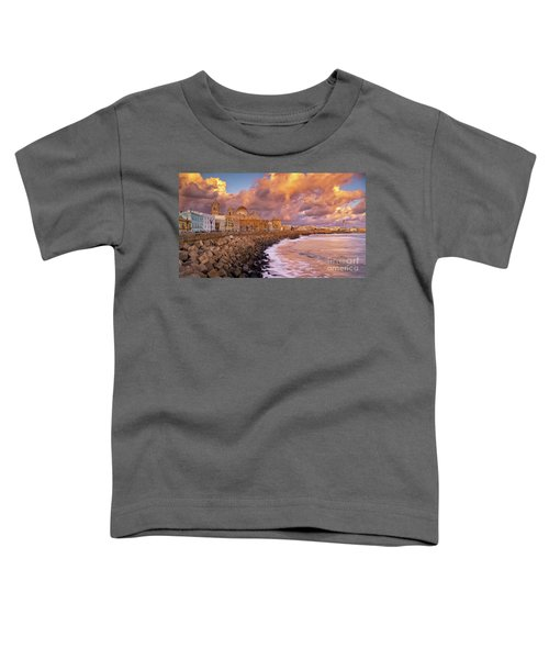 Skyline From Campo Del Sur Cadiz Spain Toddler T-Shirt