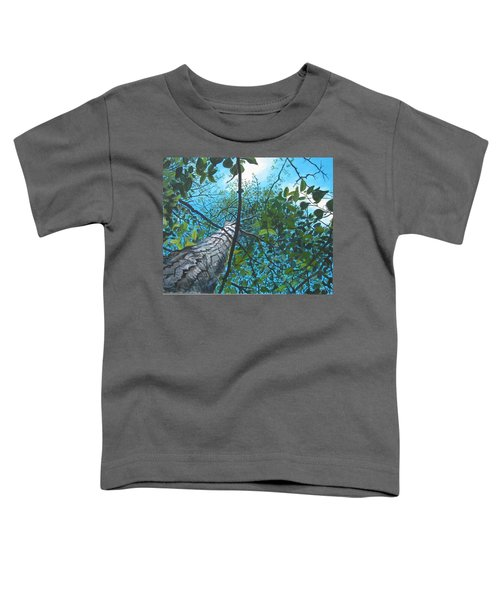 Skyward Toddler T-Shirt
