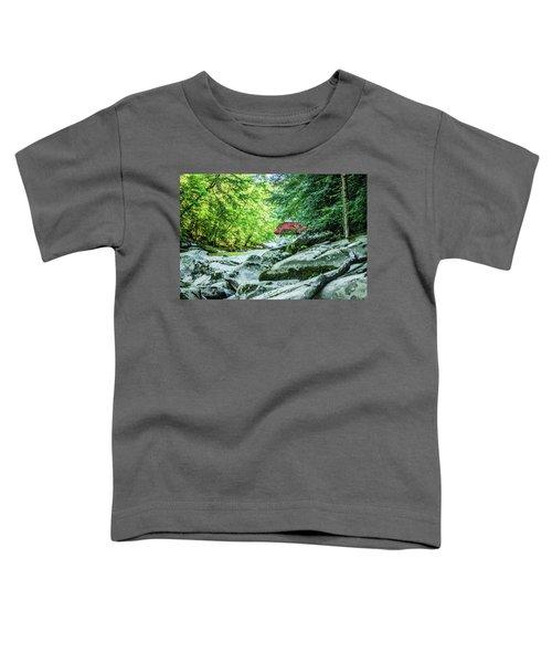 Slippery Rock Gorge - 1908 Toddler T-Shirt