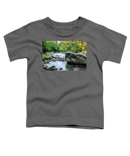 Slippery Rock Gorge - 1918 Toddler T-Shirt