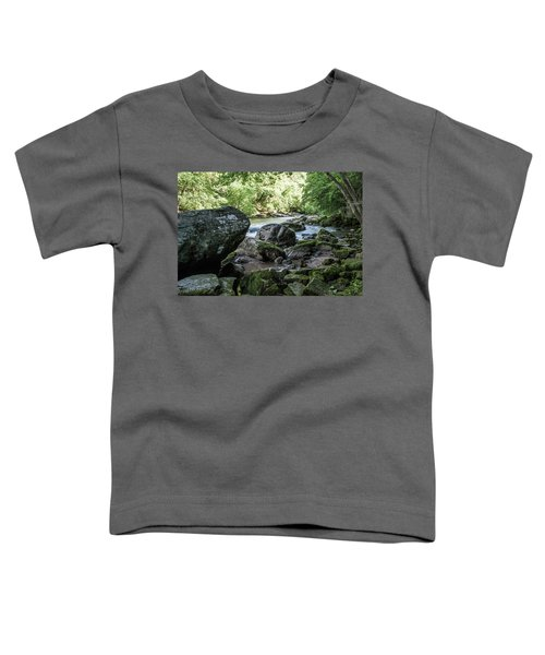 Slippery Rock Gorge - 1938 Toddler T-Shirt