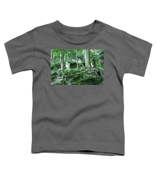 Slippery Rock Gorge - 1902 Toddler T-Shirt