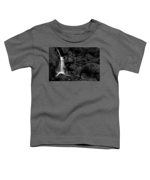 Small Fall Toddler T-Shirt