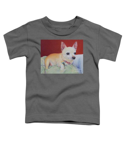 Small Package Toddler T-Shirt