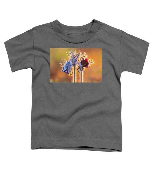 Small Pasque Flower, Pulsatilla Pratensis Nigricans Toddler T-Shirt