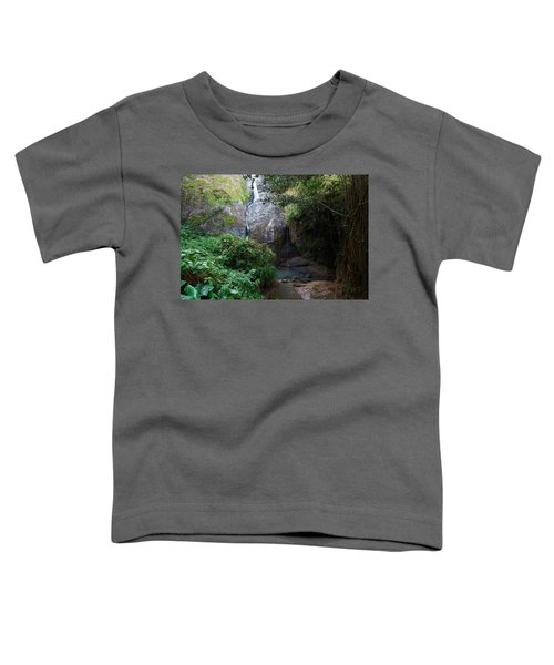 Small Waterfall Toddler T-Shirt