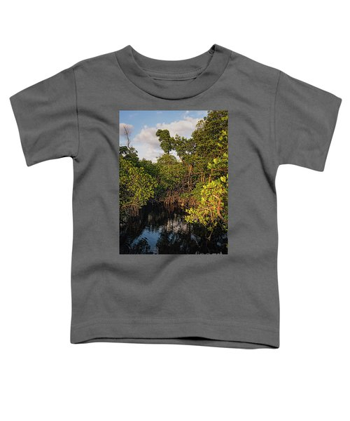 Small Waterway In Vitolo Preserve, Hutchinson Isl  -29151 Toddler T-Shirt