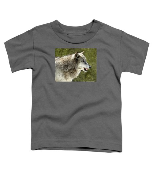 Smiling Wolf Toddler T-Shirt
