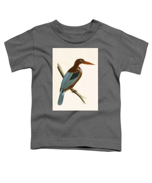 Smyrna Kingfisher Toddler T-Shirt by English School