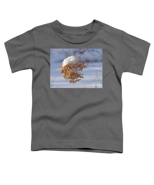 Snow-capped II Toddler T-Shirt