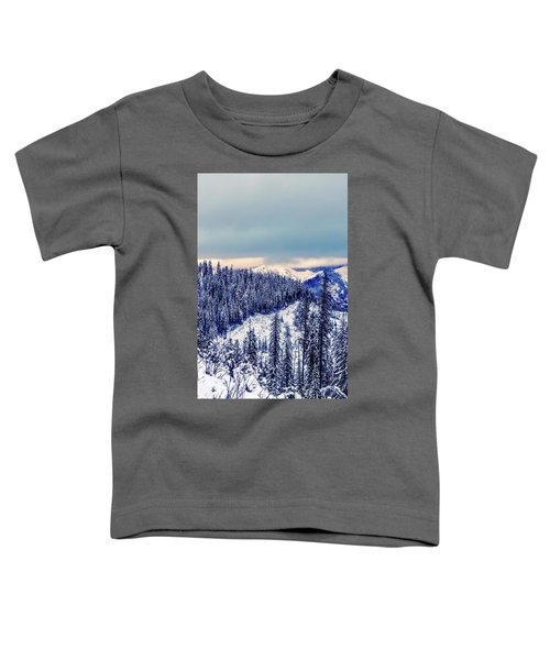 Snow Covered Mountains Toddler T-Shirt