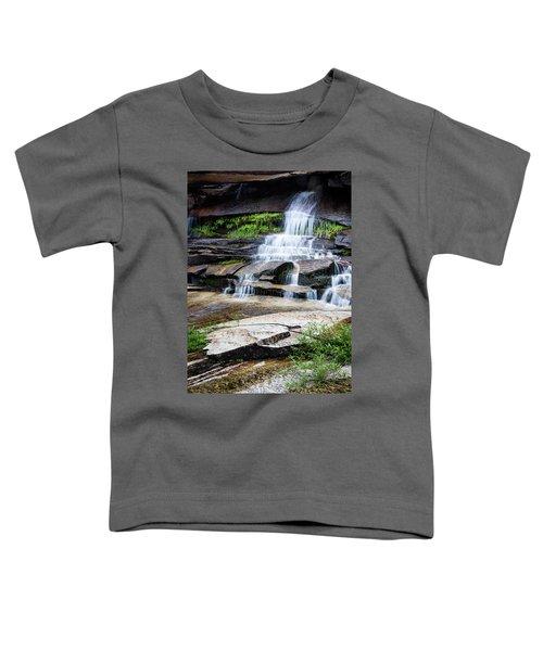 Snow Creek Cascade Toddler T-Shirt