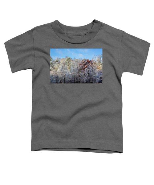 Snow Dust Toddler T-Shirt