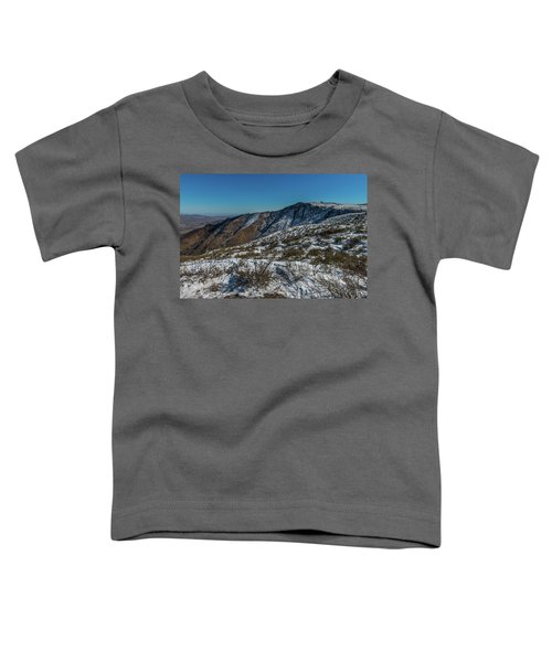 Snow In The Rain Shadow Toddler T-Shirt