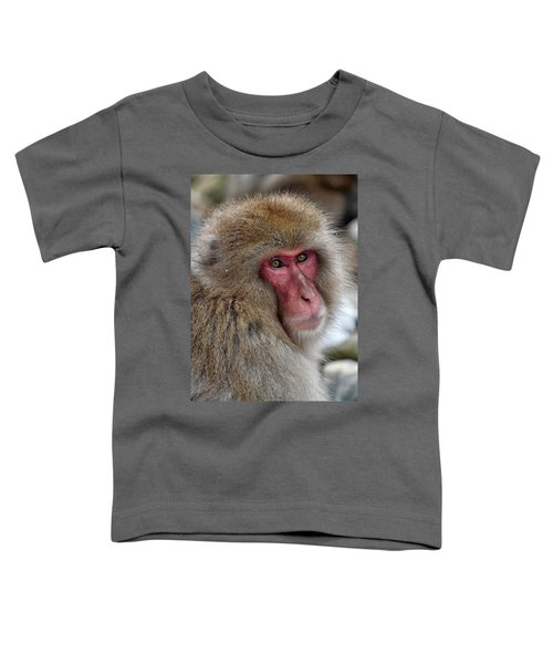 Snow Monkey Toddler T-Shirt