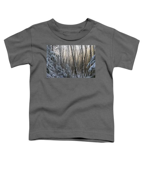 Snow On The Alders Toddler T-Shirt