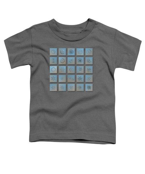 Snowflake Collage - Season 2013 Bright Crystals Toddler T-Shirt