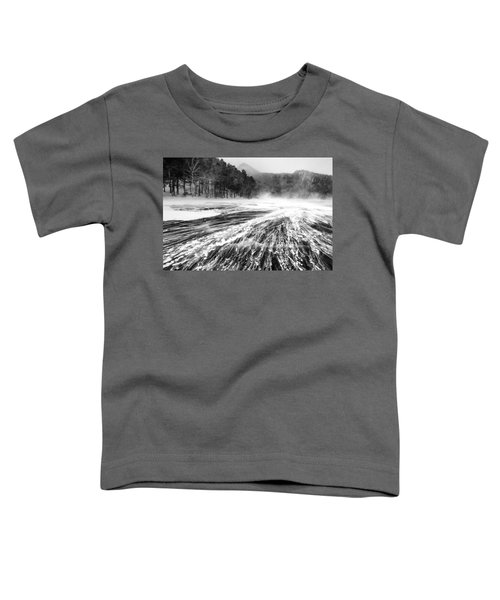 Snowstorm Toddler T-Shirt