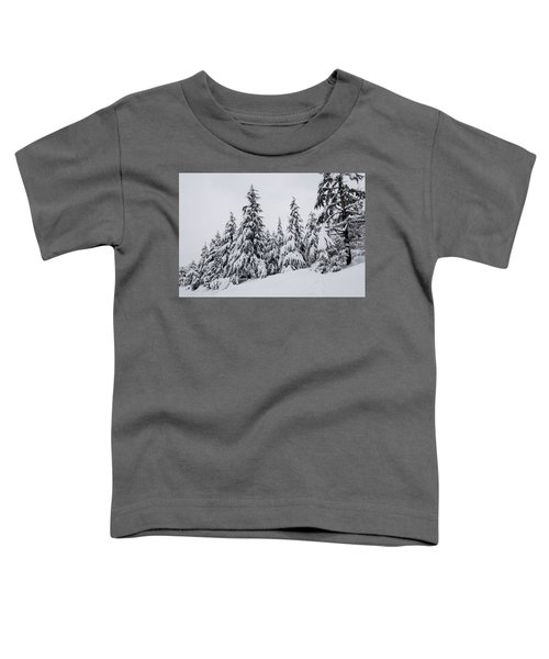 Snowy-1 Toddler T-Shirt