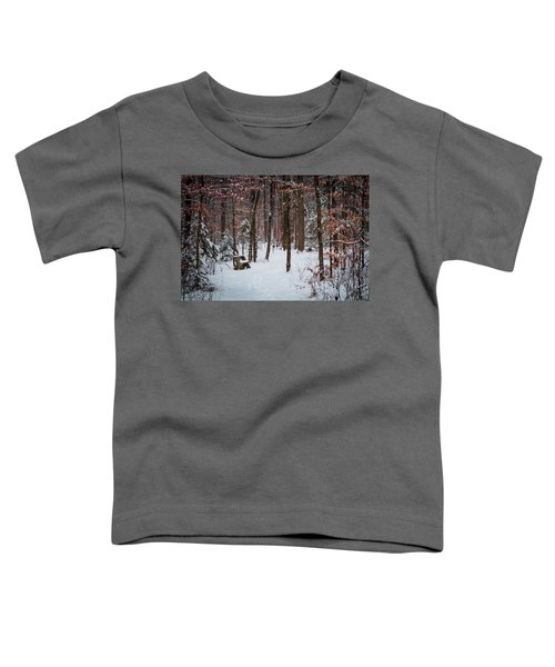 Snowy Bench Toddler T-Shirt