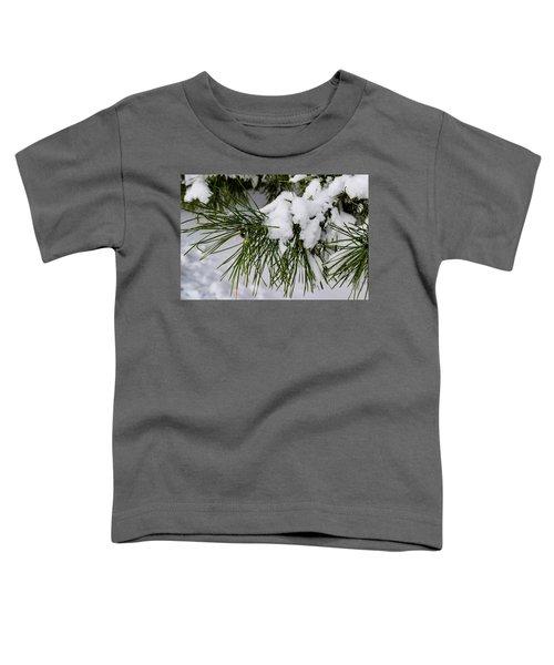 Snowy Branch Toddler T-Shirt