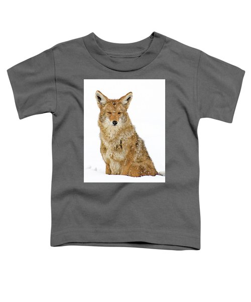 Snowy Coyote Toddler T-Shirt