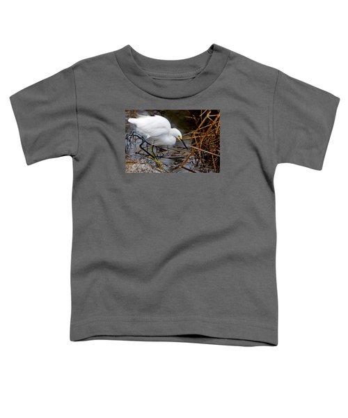 Snowy Egret Egretta Toddler T-Shirt