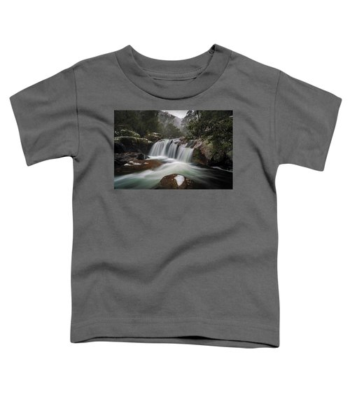 Snowy Mist Toddler T-Shirt