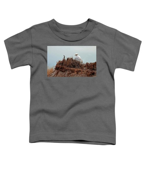 Snowy Owl In Dunes Toddler T-Shirt