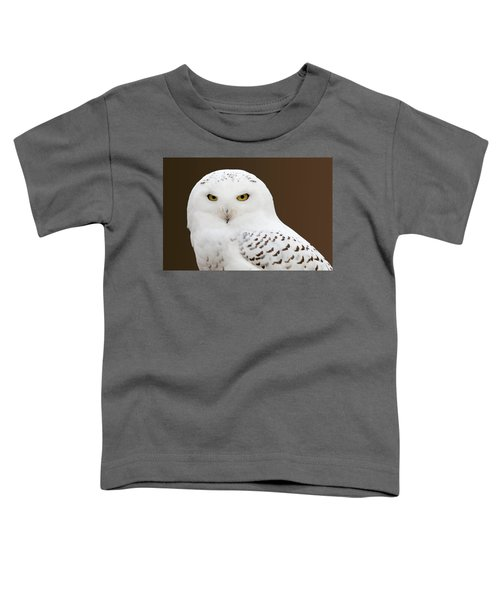 Snowy Owl Toddler T-Shirt