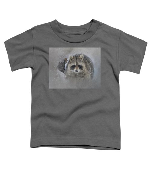 Snowy Raccoon Toddler T-Shirt