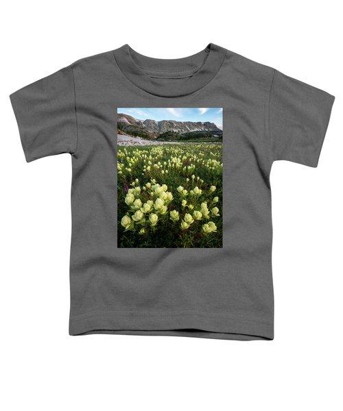 Snowy Range Paintbrush Toddler T-Shirt