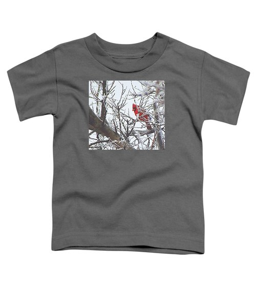 Snowy Red Bird A Cardinal In Winter Toddler T-Shirt