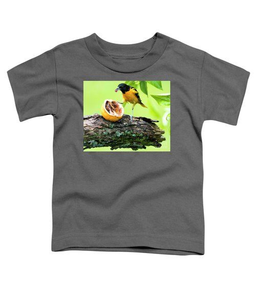 Soaking Wet Baltimore Oriole At The Feeder Toddler T-Shirt