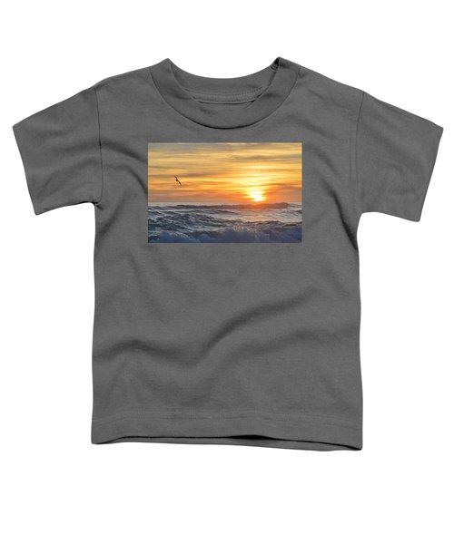 Soaring High Toddler T-Shirt